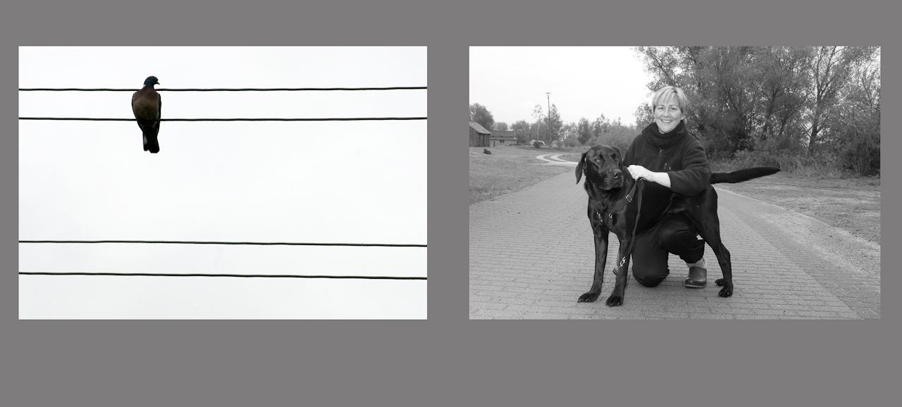 """""""Menschen auf dem Dowitzweg-  ein anhaltinisches Dorf im Havelland.""""  fotografiert am 7.12.2010 von Christiane Eisler. Hier Sozialarbeiterin Heidrun mit ihrem Hund neben einem Motiv aus dem kleinen Dorf Warnau in der Nahe von Havelberg, entdeckt am 7.5.1010., Taube auf der Stromleitung."""