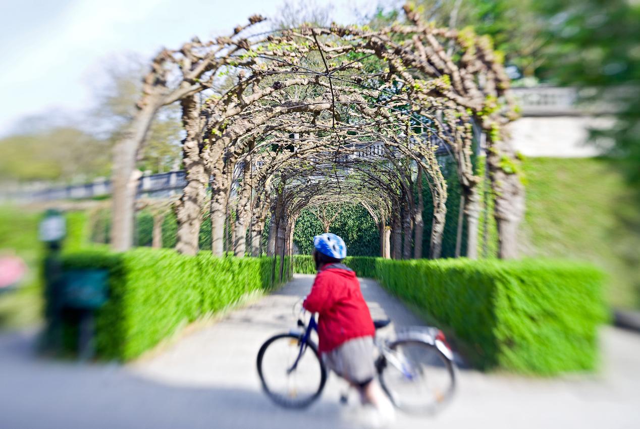 Der Hofgarten der Residenz Würzburg - UNESCO Welkulturerbe.