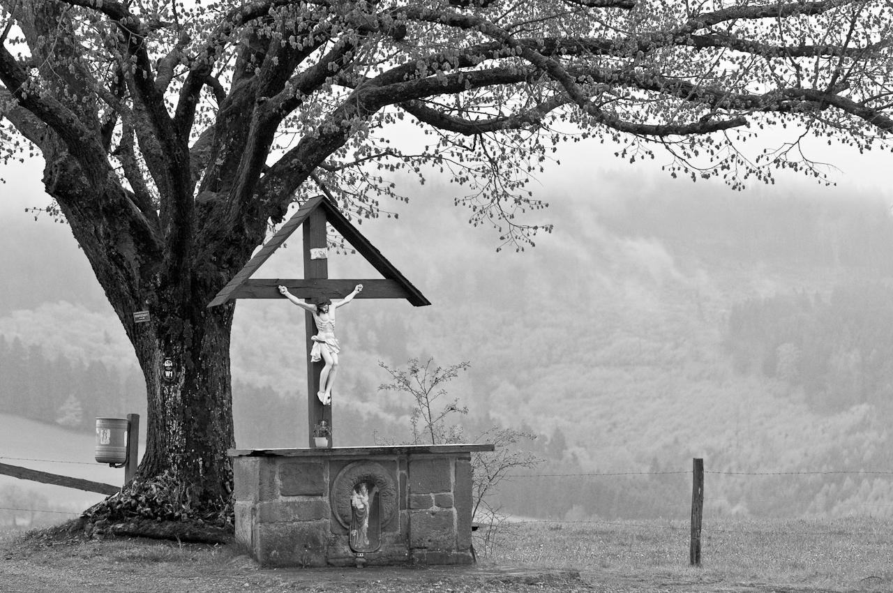 Altarstein am Prozessionsweg vom Kloster Grafschaft zum Wilzenberg, dem zentralen Berg im Schmallenberger Sauerland: Das Schmallenberger Sauerland ist sauber und ruhig. Welche Installation an diesem Baum trägt dazu mehr bei? - Dieses Bild wurde am 07.05.2010 um 15:30:40 Uhr in Schmallenberg-Grafschaft (Sauerland, Deutschland) aufgenommen.
