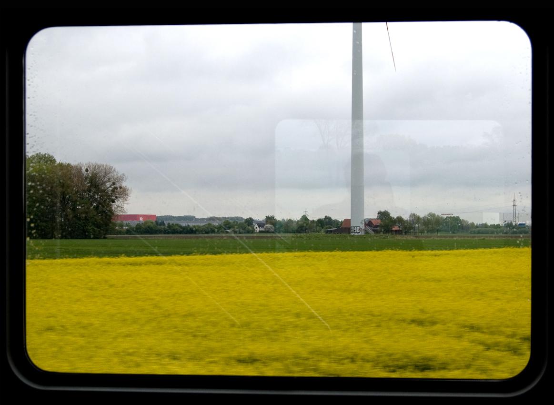Blick aus dem Zugfenster um 13.50 Uhr. Ein Rapsfeld und ein Windrad zwischen Hamm und Kamen.