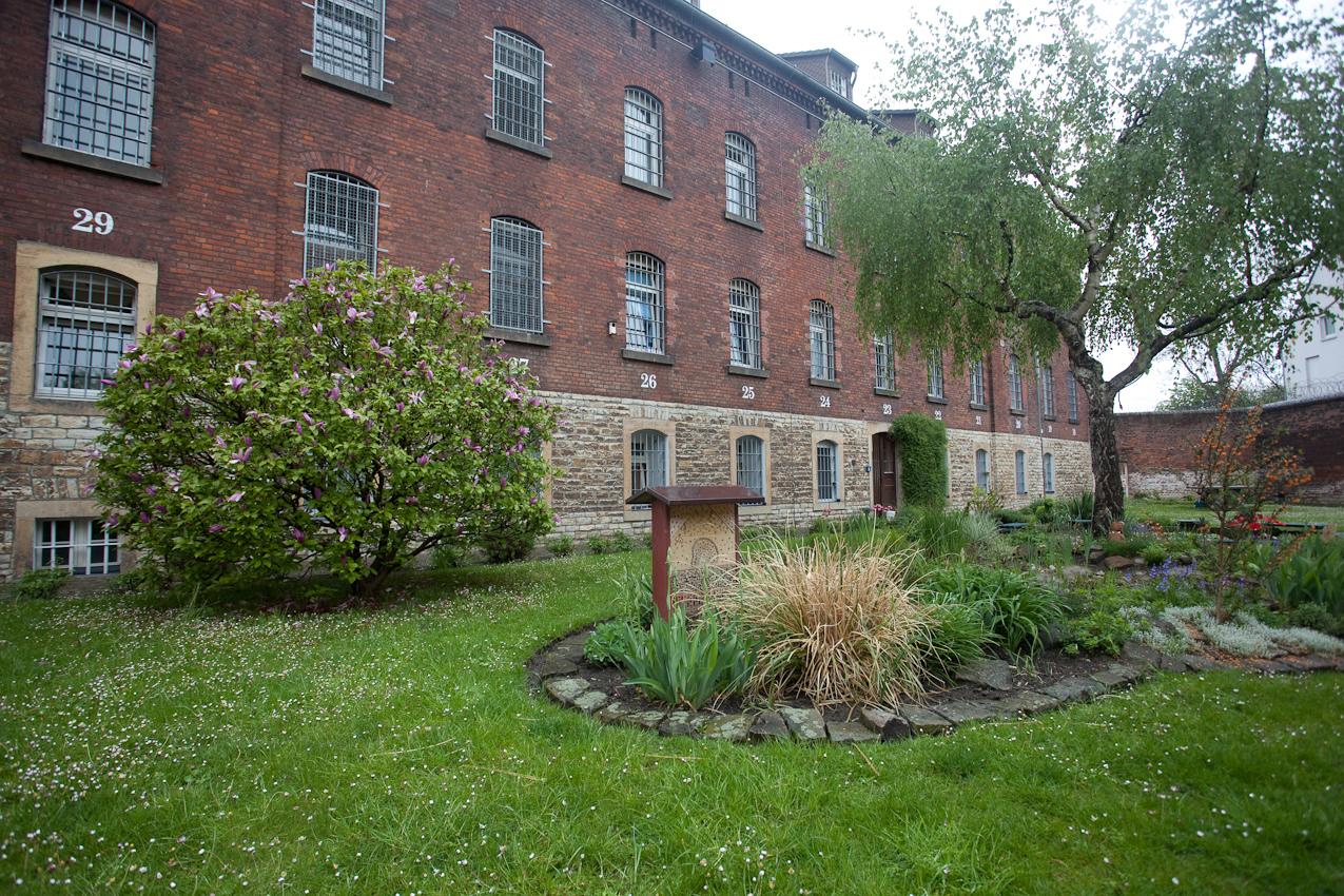 Idylle - Gartenanlage im Hof der Drogenabteilung.