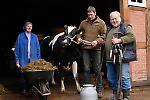 Bauernhof mit Milchwirtschaft