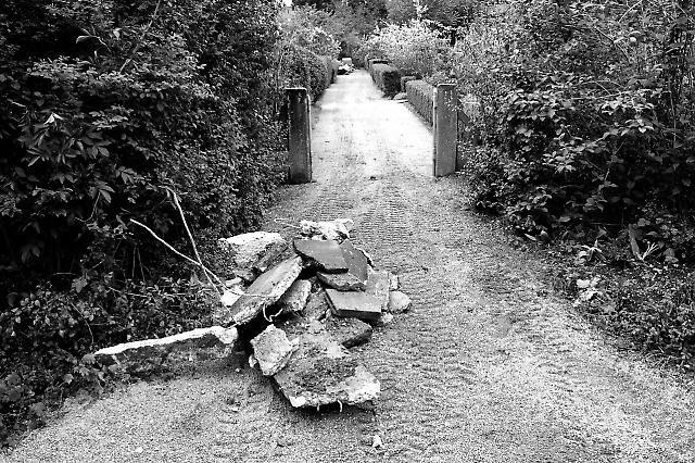 Münchener Kleingartenanlage 9